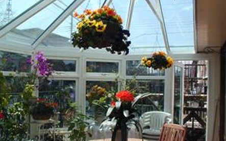 Flower House Conservatory