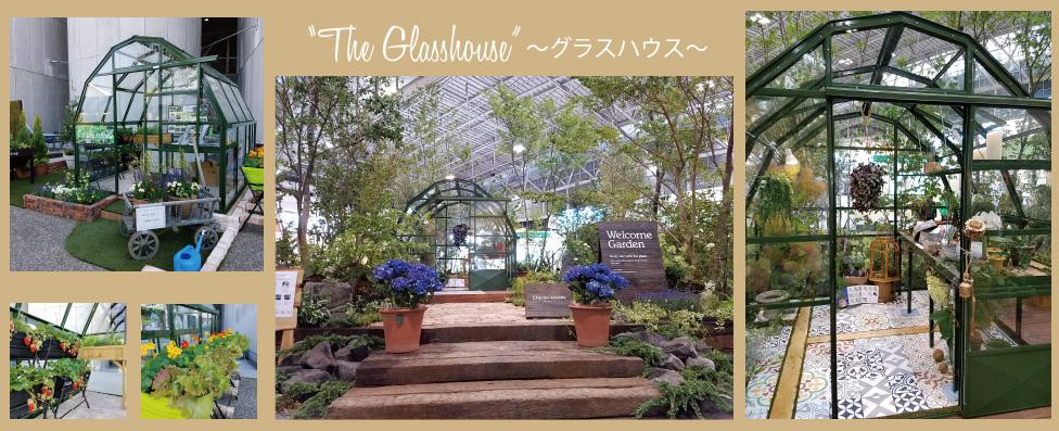 英国製グラスハウス展示写真